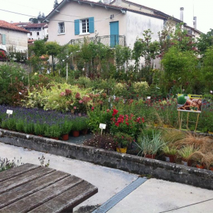 Horticulteur –  Constantin